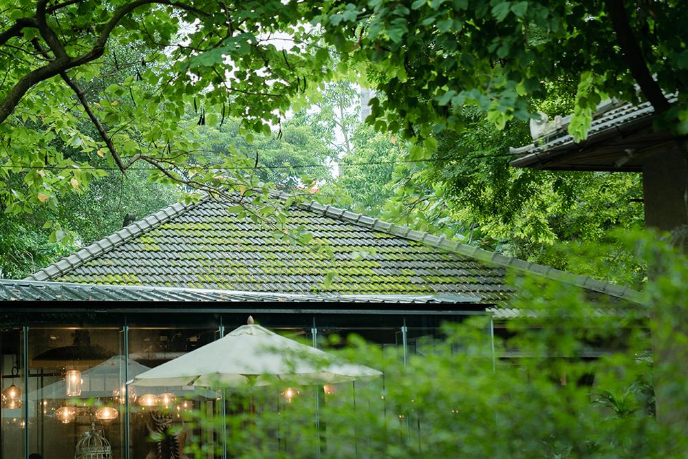漫遊昭和町,散步青田街|在名為青田的時空旅途裡,與四座古蹟對話